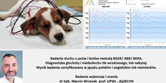 Zapraszamy na badanie słuchu – Dr Wrzosek