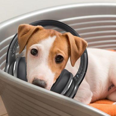 Badanie słuchu metodą BAER